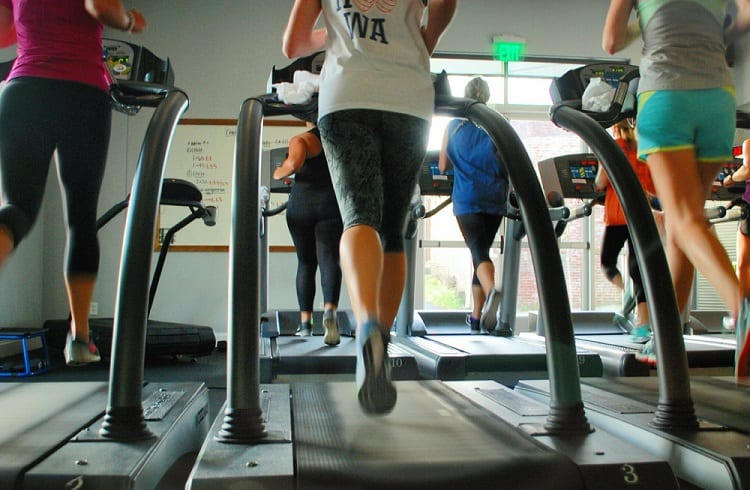group of fit woman running on treadmill